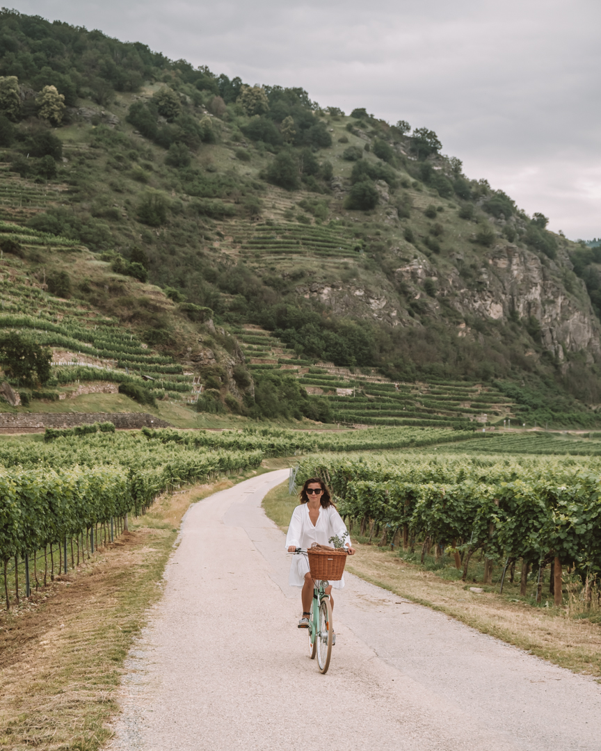 Wachau Valley by bike